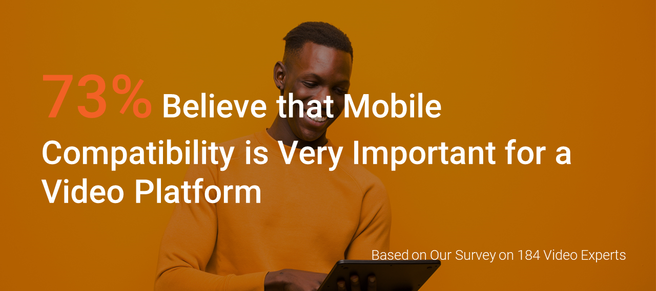 Mobile Compatibility Infographic