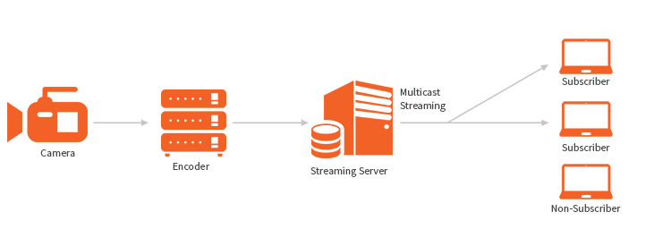 Multicast Streaming
