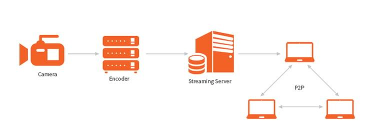 Peer-to-peer (P2P) streaming